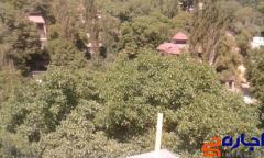 اجاره روزانه باغ ویلا ارزان اطراف تهران دماوند 09197225539